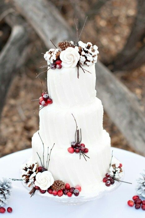 winter_wedding87